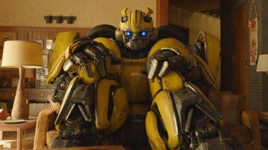 bumblebee-excl-crop-no-wm-nxz4rum2d9x2h2edpav4kysq9reavomh1qyhe2xhpk.jpg